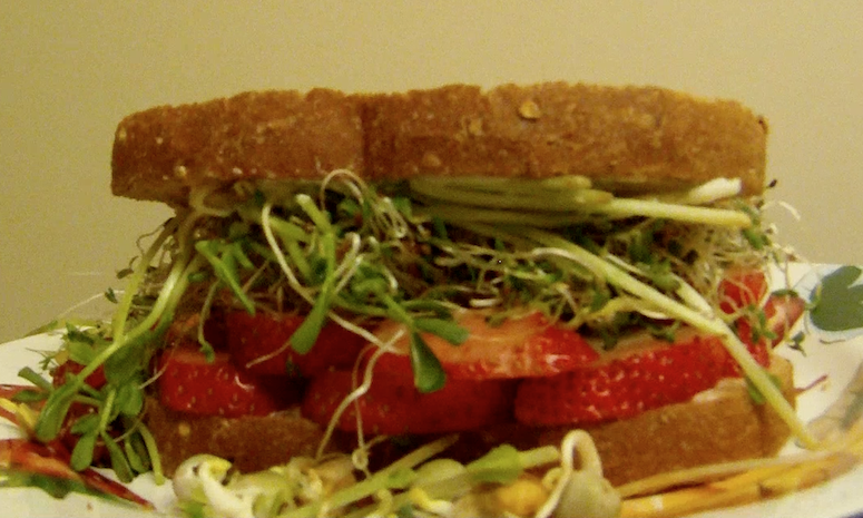 A strawberries and sprouts sandwich pic from Life Is Melody